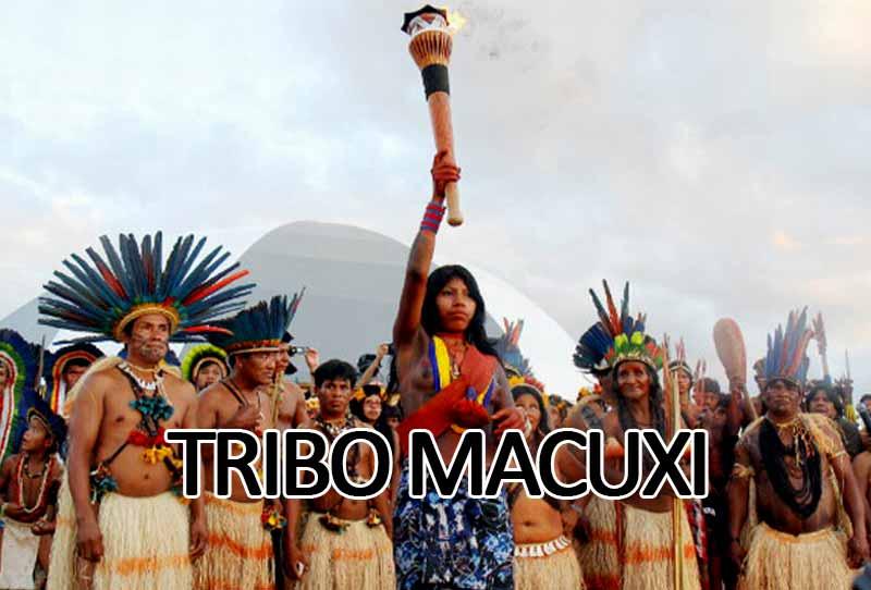 Tribo Macuxi